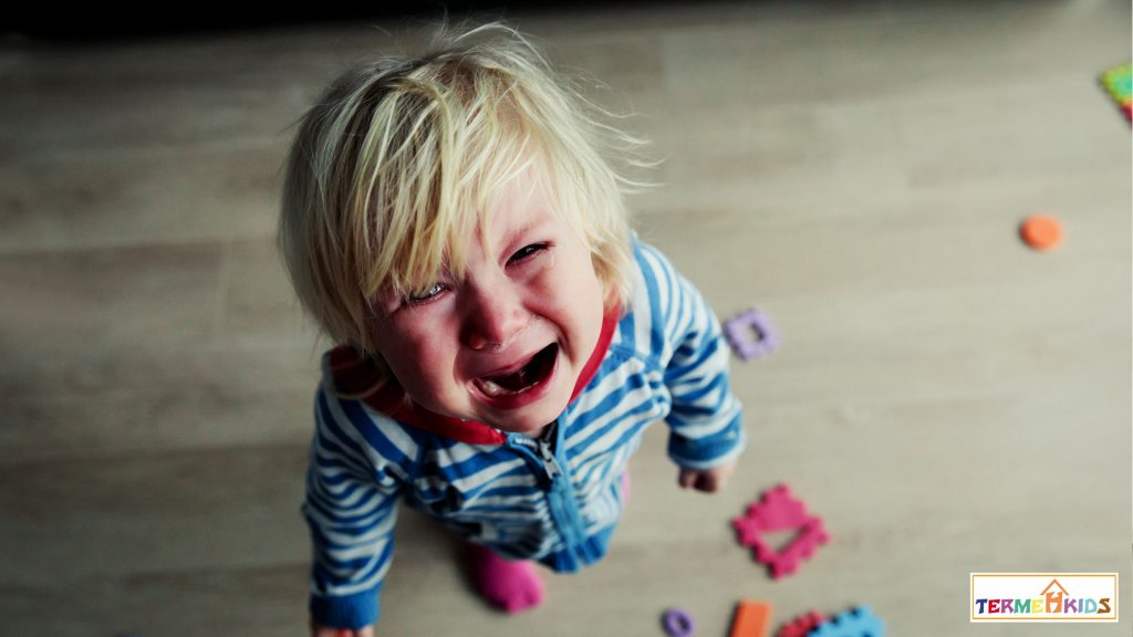 TermehKids Kids Behavior 6 1024x576 - چگونه به راز رفتارهای مختلف کودک پی ببریم؟